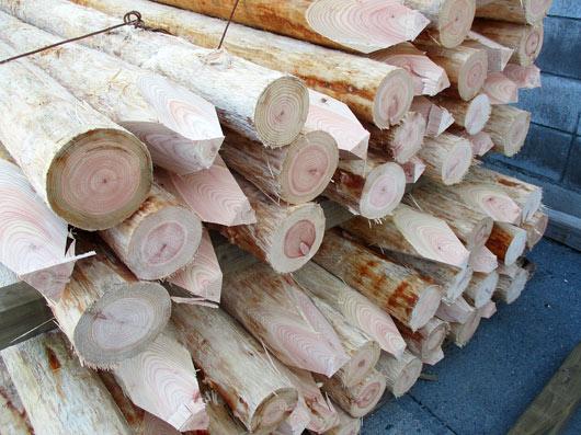 小径木部門2